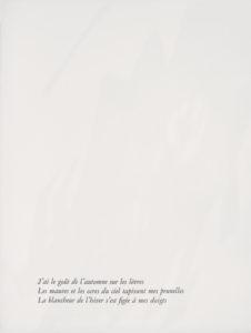 portfolio - the skins of things 1968 4